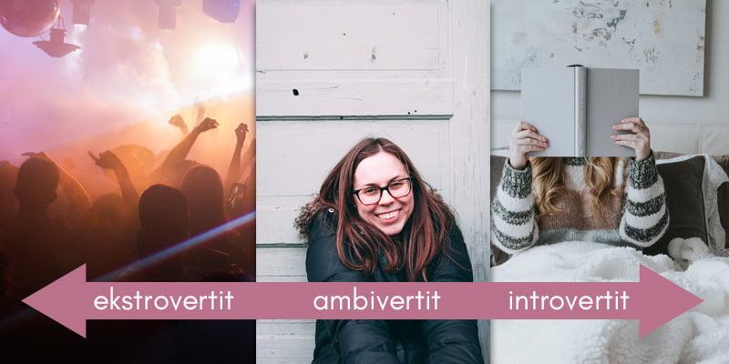 ambivertit, introvertit ja ekstrovertit kuvalla selitettynä